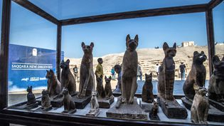 Statuettes de chats exposées à Saqqarah après l'annonce d'une nouvelle découverte archéologique, le 23 novembre 2019 (KHALED DESOUKI / AFP)