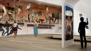 Dans le futur musée... en images de synthèse.  (Zen+dco)