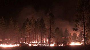Un feu de forêt dans l'Etat de l'Oregon aux Etats-Unis le 15 juillet 2021. (JASON PETTIGREW / BOOTLEG FIRE INCIDENT COMMAND / AP)