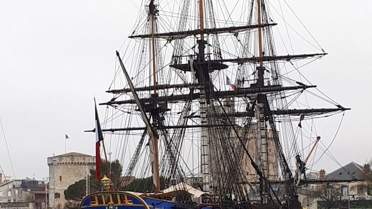 Comme en 2015, le commandant Yann Cariou sera au gouvernail, secondé par 350 gabiers qui se relaieront à bord. (BENJAMIN MATHIEU / RADIO FRANCE)
