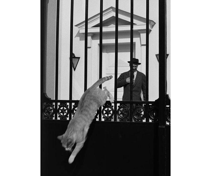 Sabine Weiss, Félix Labisse, peintre décorateur, Neuilly-sur-Seine, 1952. (© SABINE WEISS)