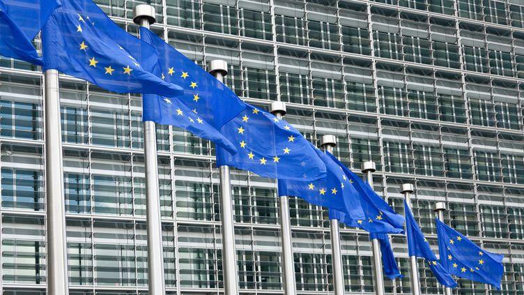 Pour la première fois, l'exécutif européen dispose d'un droit de regard sur les budgets des 17 pays de la zone euro. (WALTER ZERLA / CULTURA CREATIVE / AFP)