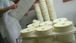 Fabrication du fromages saint-nectaire au Gaec de la Prade (image d'illustration). (MAXPPP)