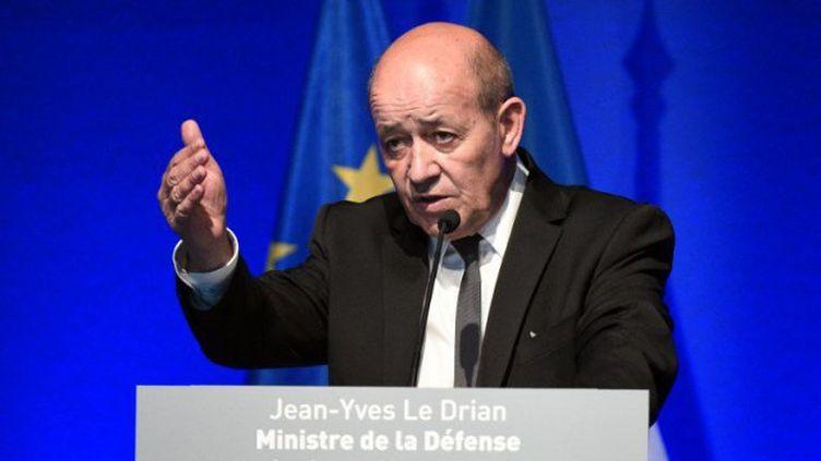 Le ministre de la Défense, Jean-Yves Le Drian. (DAMIEN MEYER / AFP)
