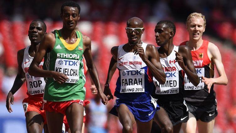 Le Britannique Mo Farah à la lutte sur 5000m (OLIVIER MORIN / AFP)