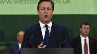 Le Premier ministre sortant, David Cameron, le 8 mai 2015 à Witney (Royaume-Uni). (TOBY MELVILLE / REUTERS)