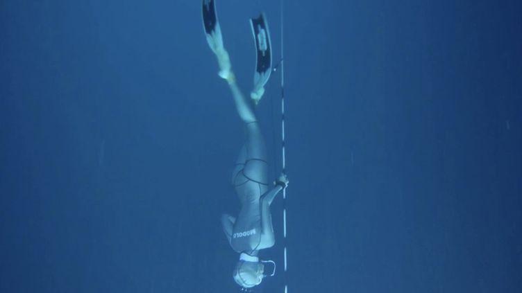 Bahamas : dans le Trou bleu de Dean, les apnéistes plongent à plus de 100 mètres de profondeur (FRANCE 2)