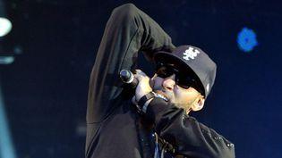Le rappeur La Fouine au Printemps de Bourges en 2011.  (Alain Jocard /AFP)