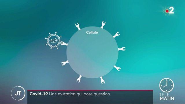 Covid-19: au Royaume-Uni, une mutation du virus qui questionne
