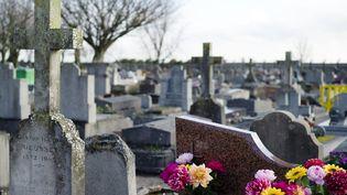 Une photo du cimetière de Wissous (Essonne), où la petite Maria Francesca a été inhumée, lundi 5 janvier 2015. (KENZO TRIBOUILLARD / AFP)