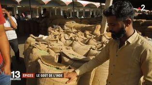 À la découverte des épices, en Inde. (France 2)
