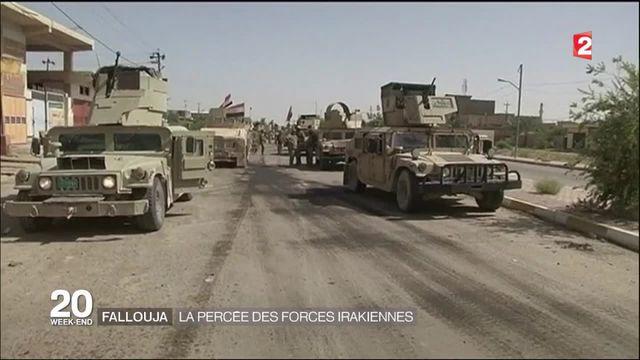 Irak : Les forces gouvernementales annoncent la reprise de 80% de Falloujah des mains de l'Etat islamique