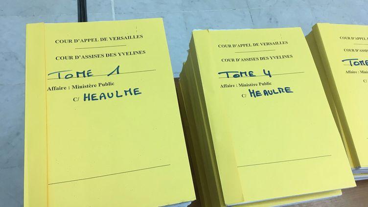 Le procès en appel de Francis Heaulme, pour le double meurtre de Montigny-les-metz en 1986, a démarré le 4 décembre 2018. (CÉCILE SOULÉ / FRANCE-BLEU LORRAINE NORD)