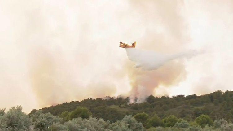 Aude : premier incendie de l'été dans le massif de la Clape (France 3)