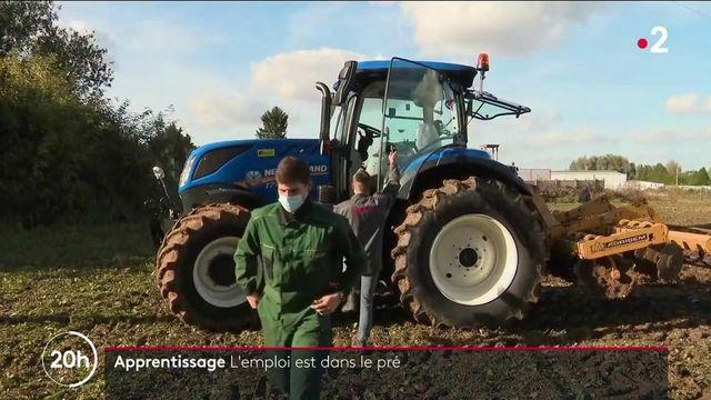 Emploi : la filière agricole attire de plus en plus les jeunes