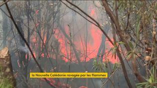 La Nouvelle-Calédoniesous les flammes (FRANCEINFO)