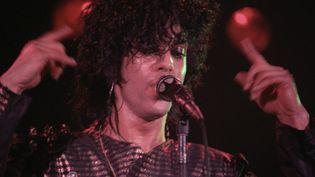 Prince sur scène à Minneapolis le 3 août 1983.  (Michael Ochs Archives / Getty Images)