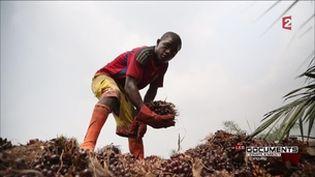 Complément d'enquête. Colère dans l'empire africain de Vincent Bolloré (COMPLÉMENT D'ENQUÊTE/FRANCE 2)