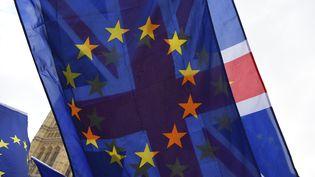 Des manifestants brandissent les drapeaux britannique et européen devant le Parlement de Londres (Royaume-Uni), le 6 février 2018. (ALBERTO PEZZALI / NURPHOTO / AFP)