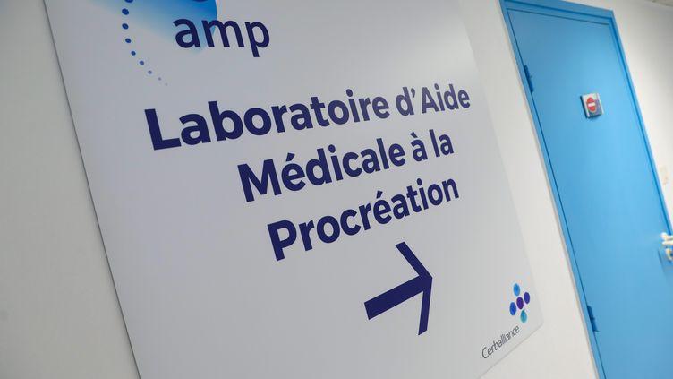 Un laboratoire d'aide médicale à la procréation (THIERRY THOREL / MAXPPP)