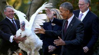 Barack Obama gracie sa dernière dinde de Thanksgiving, le 23 novembre 2016, à la Maison Blanche, à Washington (Etats-Unis). (CARLOS BARRIA / REUTERS)