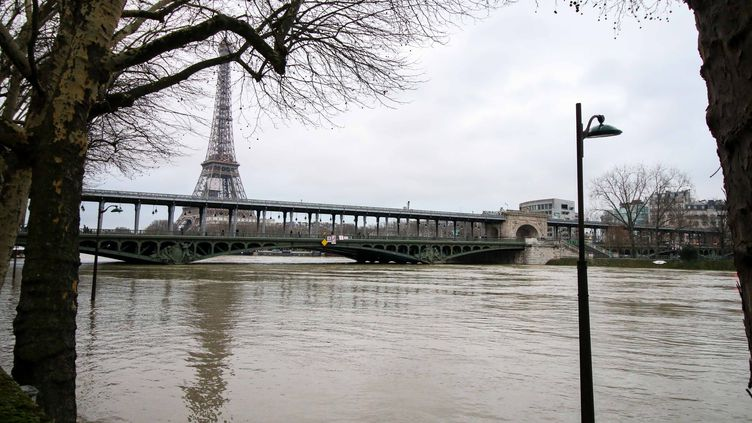 La Seine en crue, dimanche 28 janvier 2018, à Paris. (RADIO FRANCE / YANN SCHREIBER)