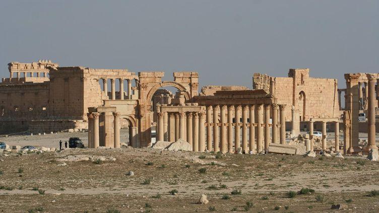 Le site antique de Palmyre (Syrie), photographié le 13 avril 2010. (ANTOINE MATEOS / CITIZENSIDE / AFP)
