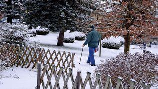 Un homme se déplace dans la neige, le 13 janvier 2017, àSaint-Symphorien-sur-Coise (Rhône). (MAXPPP)