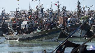 Bateaux de pêche dans le port de Laayoun, au Sahara occidental. (FADEL SENNA / AFP)