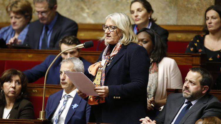 Martine Leguille-Balloy, députée LREM de la 4ème circonscription de la Vendée. (LEON TANGUY / MAXPPP)