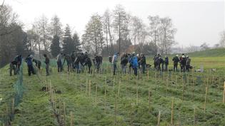 (Les Planteurs Volontaires du Nord-Pas-de-Calais)