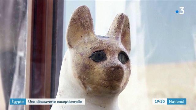 Égypte : de nombreuses momies animales découvertes