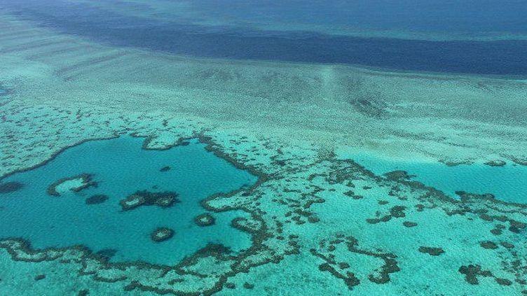 La Grande barrière de corail, en Australie. Outre ses matières premières, le pays dispose de ressources importantes dans l'industrie des services, comme le tourisme. (Sarah Lai / AFP)