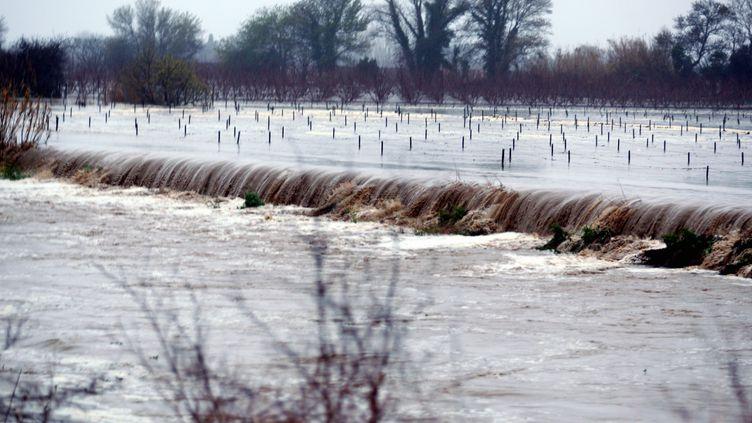 En raison des fortes précipitations de ces derniers jours, une digue a notamment cédé le 6 mars 2013 près de Perpignan (Pyrénées-Orientales). (MAXPPP)