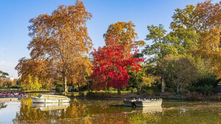 Le lac du bois de Vincennes, près de Paris, le 6 novembre 2020. (GARDEL BERTRAND / HEMIS.FR / AFP)