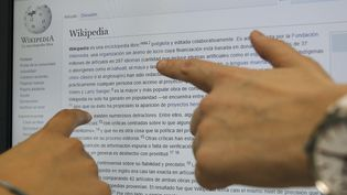 Des internautes consultent le site Wikipédia à Madrid (Espagne), le 17 juin 2015. (MAXPPP)
