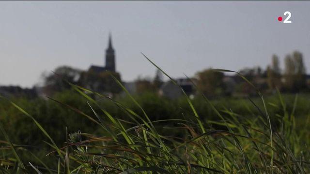 Bretagne : les locations à la campagne ont le vent en poupe