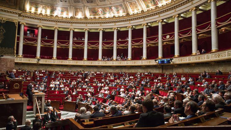 L'Assemblée nationale, à Paris, le 19 juillet 2016. (IRINA KALASHNIKOVA / SPUTNIK / AFP)