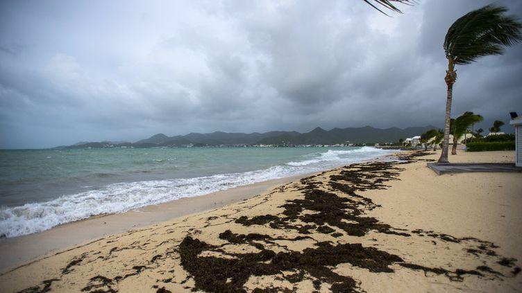 La plage à Marigot (Saint-Martin) à l'arrivée de l'ouragan Irma, le 5 septembre 2017. (LIONEL CHAMOISEAU / AFP)