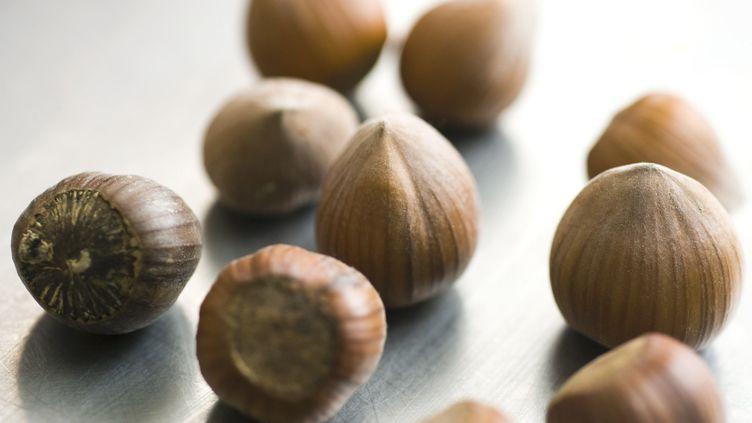 (Le groupe Ferrero, qui fabrique entre autres le Nutella, achète chaque année 25% des ressources mondiales de noisettes © MAXPPP)