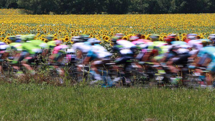 Le peloton Tour de France (KENZO TRIBOUILLARD / AFP)