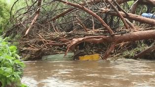 La chutes de troncs d'arbres a bouché le passage de cours d'eaux, favorisant les inondations (CAPTURE D'ÉCRAN FRANCE 3)