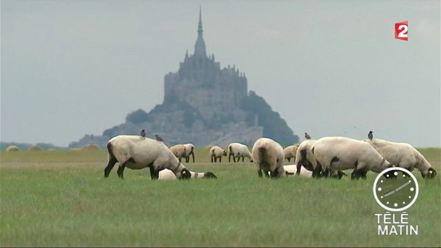 Tourisme : l'embellie des monuments nationaux