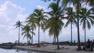 Covid-19 : confinée, la Martinique accuse une forte baisse de sa fréquentation touristique (France 2)