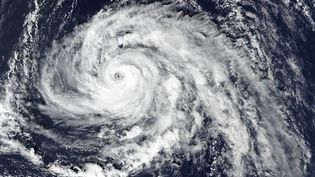 Image satellite de l'ouragan Ophelia approchant les Açores, le 13 octobre 2017. (NASA EARTH OBSERVATORY / AFP)