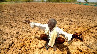 La sécheresse en Inde désespère ujn paysan, à Mysuru. (S NAGENDRA / THE TIMES OF INDIA)