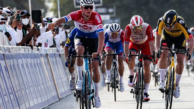 Mathieu van der Poel, membre de l'équipe Alpecin-Fenix  (GIUSEPPE CACACE / AFP)