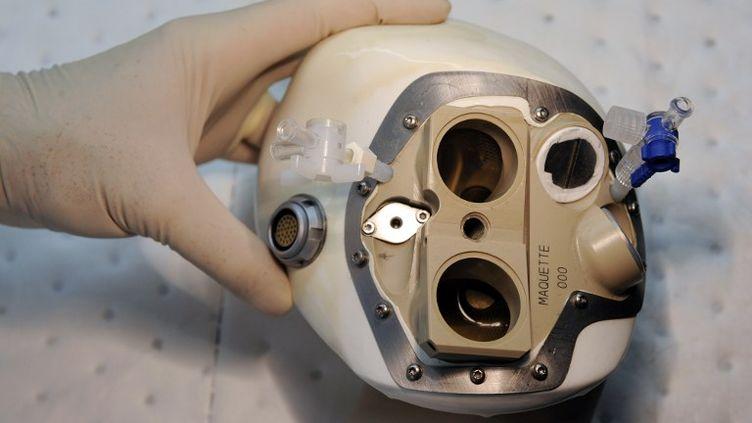 Un cœur artificiel conçu par la société française Carmat, dans les mains d'un employé, le 24 septembre 2009, à Vélizy (Yvelines). (FRANCK FIFE / AFP)