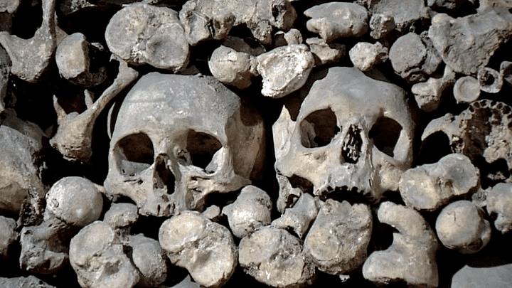 L'ossuaire de la Chapelle expiatoire des Boteaux recense les restes de 2000 victimes  (France 3 / Culturebox)