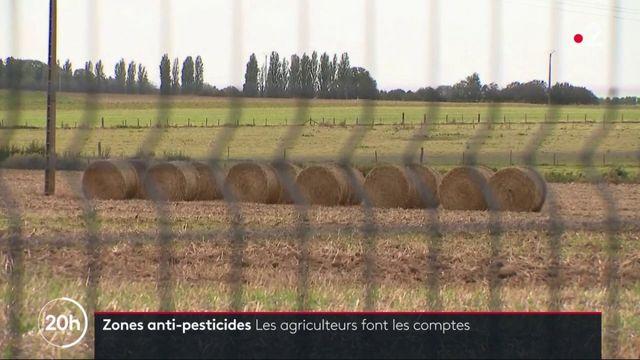 Zones antipesticides : les agriculteurs calculent leurs pertes éventuelles